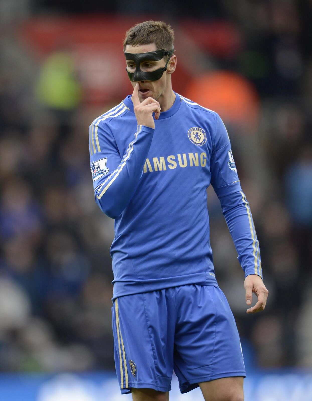 Paquete Fernando Torres