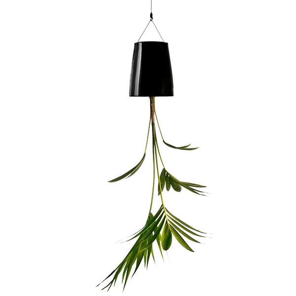 Plantas Invertidas
