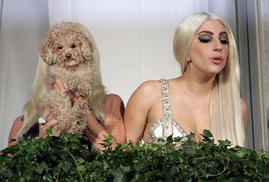Lady Gaga Versus Versace