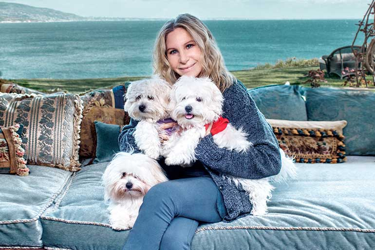 Barbra Streisand clona a su perra muerta