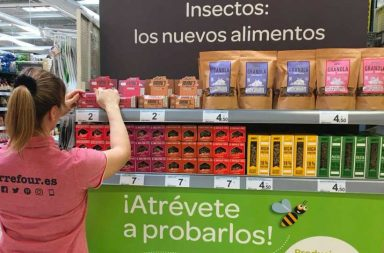 Insectos Carrefour